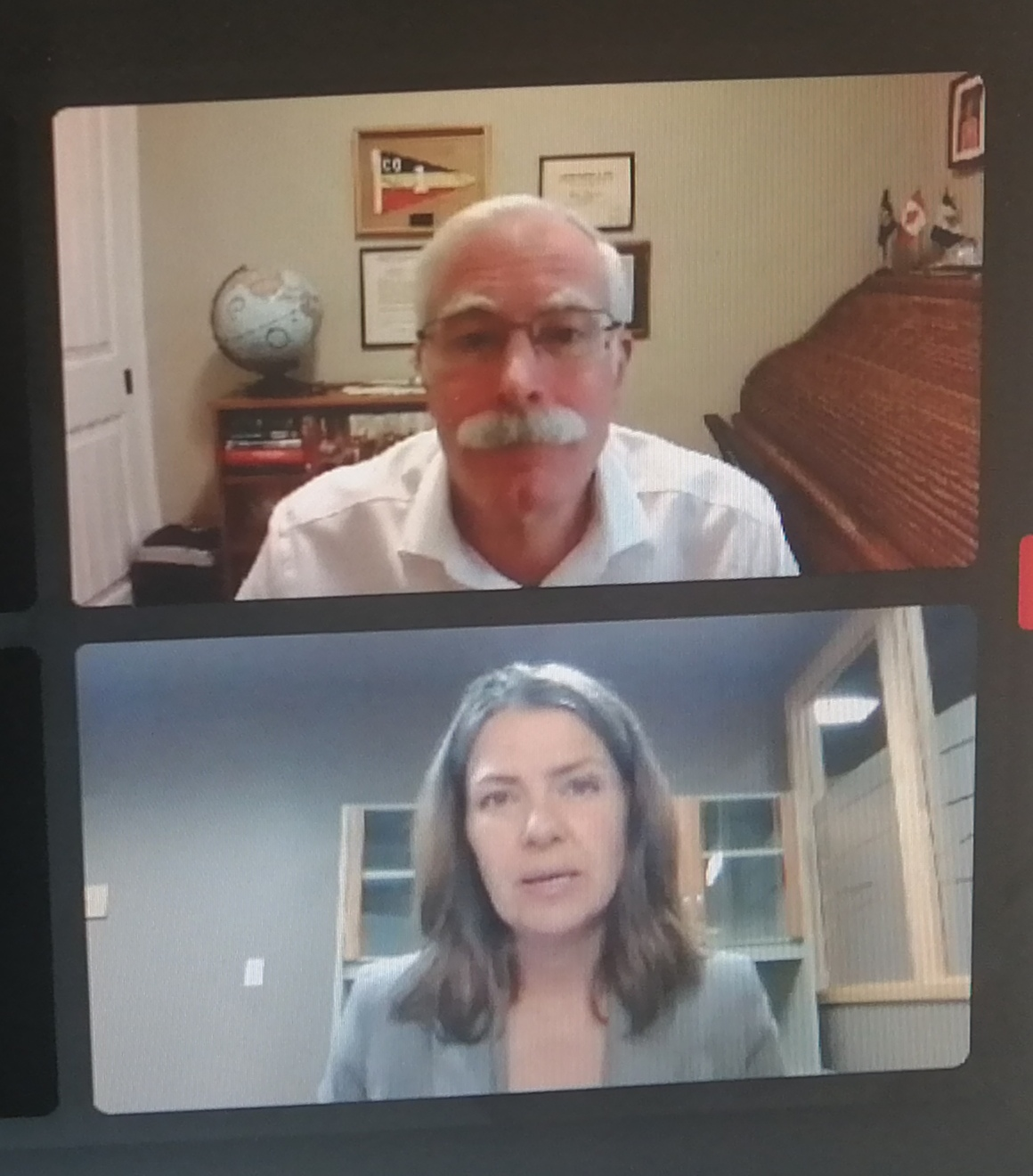 Screen shot photo by Stan Ashbee Former radio host and politician Danielle Smith moderated a recent virtual webinar featuring David Redman.